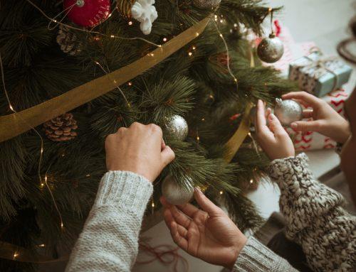 Eigentlich sind wir doch alle zivilisierte Menschen. Warum gibt es trotzdem so oft Streit, wenn die Familie Weihnachten zusammenkommt?